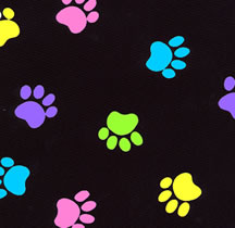Multi Color Paws Print