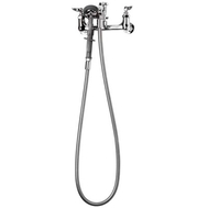 "T&S 8"" Wall Mount Faucet, Hose, Sprayer, VB"