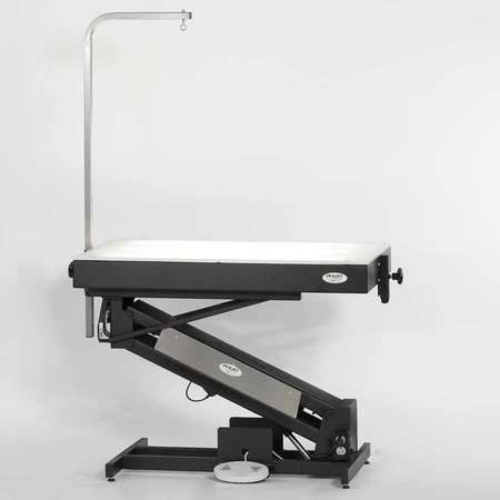 "Petlift 42"" Masterlift Electric Table w/Fixed Lighted Top"